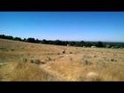 MTB biking, Stormin Mormon, down hill