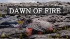Dawn of Fire