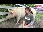 Farm Sanctuary :Down on the Farm With Farm Animal Whisperer Susie Coston