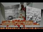 Fake of Nanking vol.2
