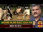 Effect of Jallikattu Ban : Around 80,000 Bulls Sold for Meat in 2014 - Thanthi TV